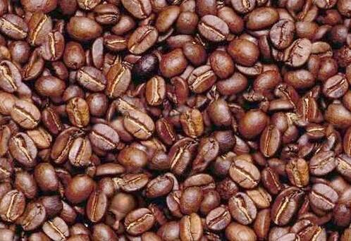 kopf_kaffee