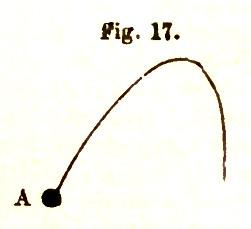 fig17 parkers compendium